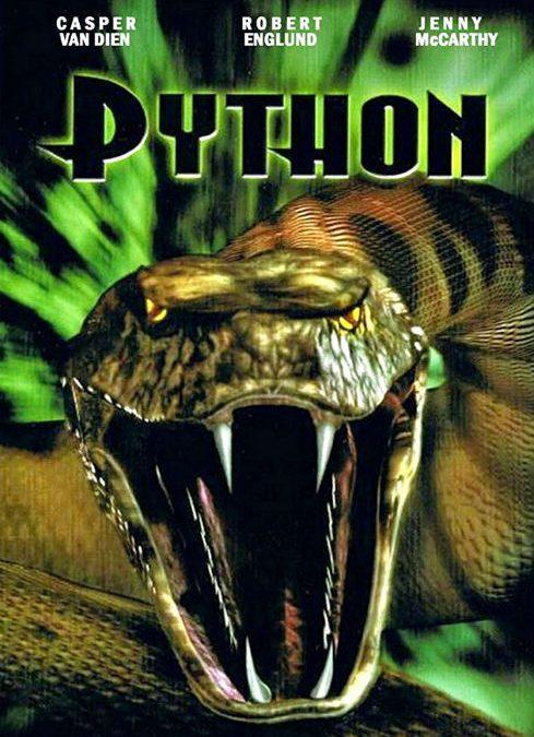 PYTHON V.F